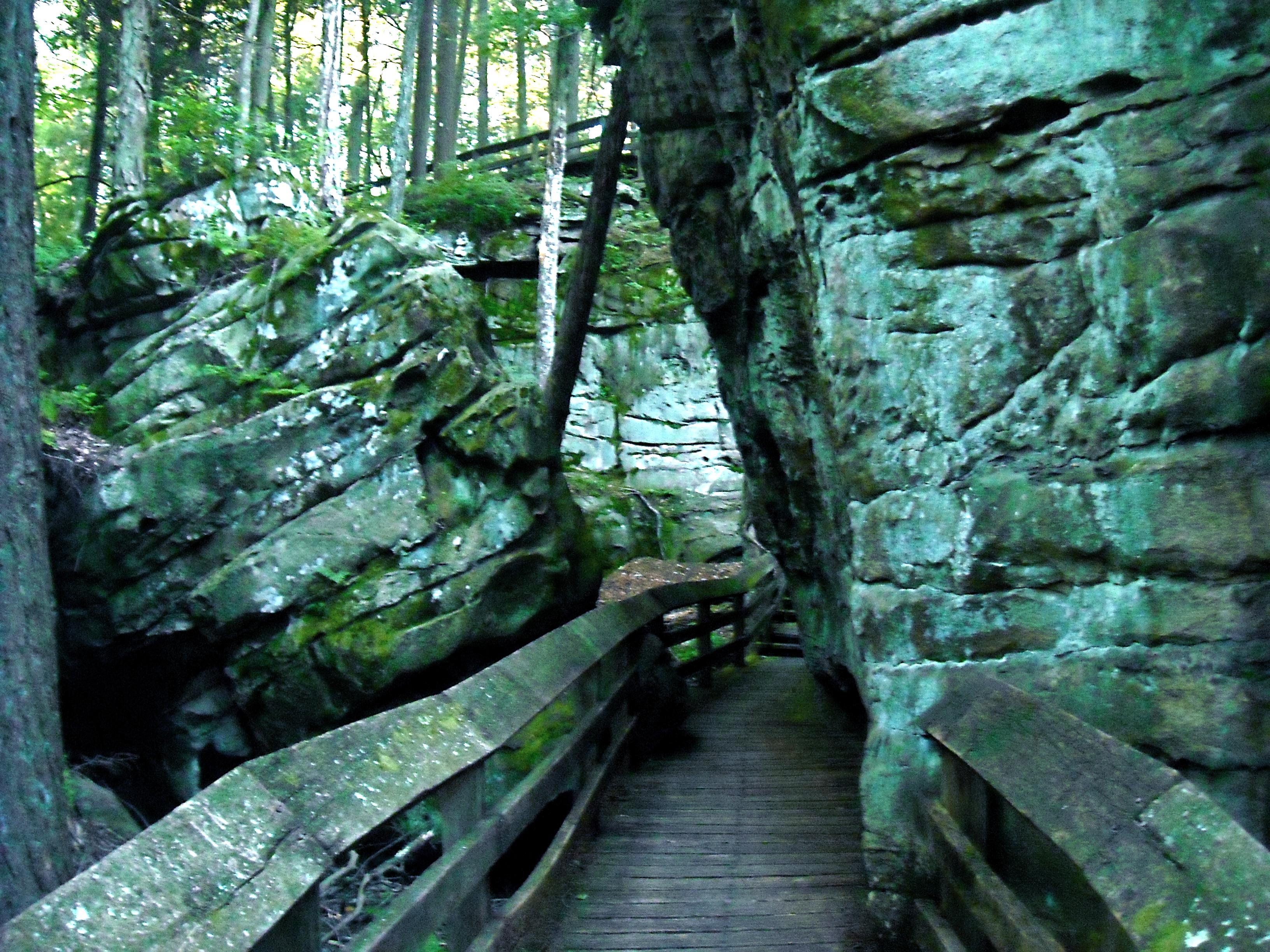 Beartown state park monongahellyeah - Towne place at garden state park ...